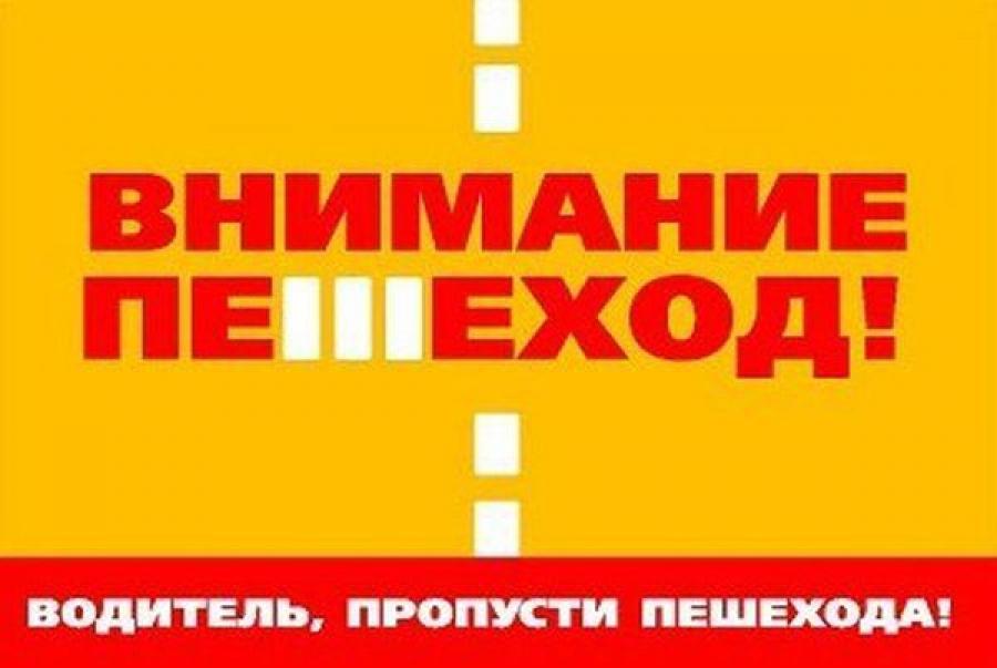 Операция «Пешеход» проходит в Тверской области