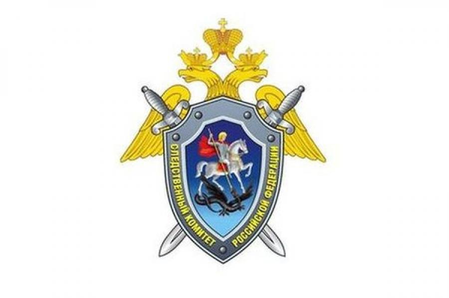 Тело школьника с пакетом на голове обнаружено в Тверской области