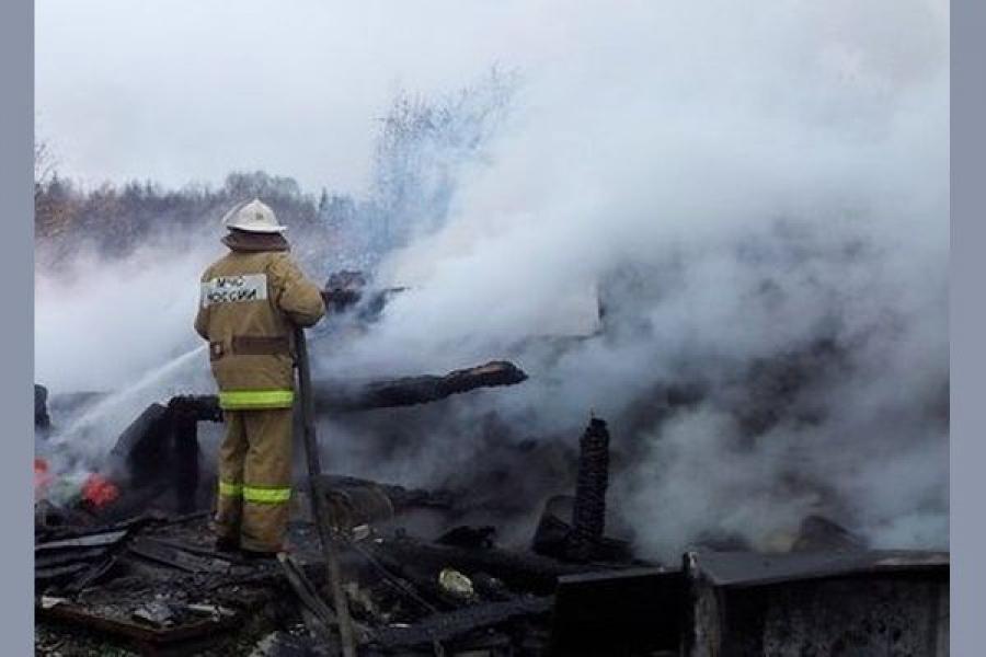 На пожаре в Молокове пострадал человек