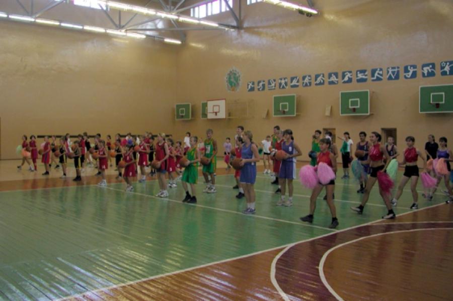 Сельские школы получат деньги на новые спортзалы