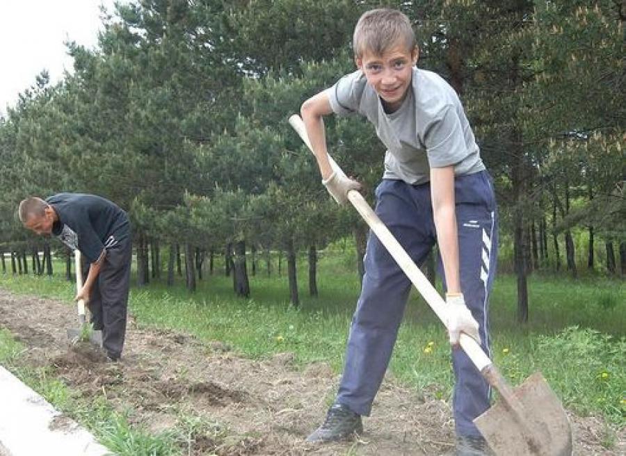 Более 5 тысяч подростков работали в Тверском регионе этим летом