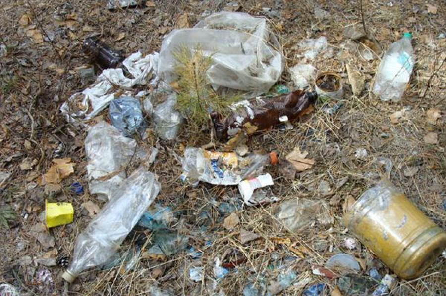 Природоохранная прокуратура через суд обязала администрацию Твери убрать мусор из зеленой зоны