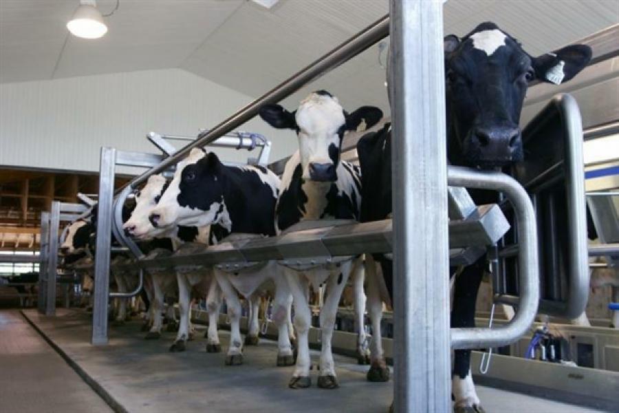 Тверские производители продуктов питания могут выйти на внутренний рынок