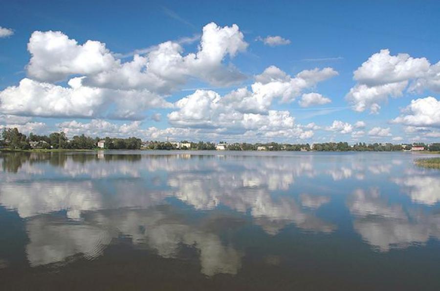Прокуратура спасла озеро Бологое