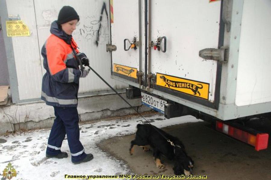 В центре Твери кинолог с собакой обследовали подозрительные бесхозные сумки