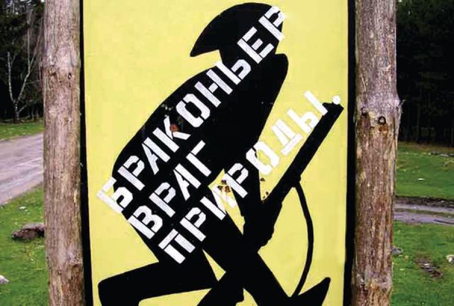 В Калининском районе браконьеры убежали от егерей, побросав ружья