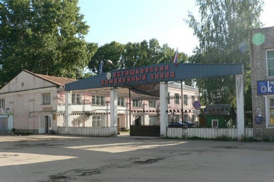 Осташковский кожевенный завод возрождается
