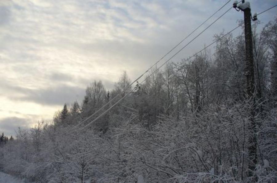 Продолжается борьба за электроснабжение Тверской области