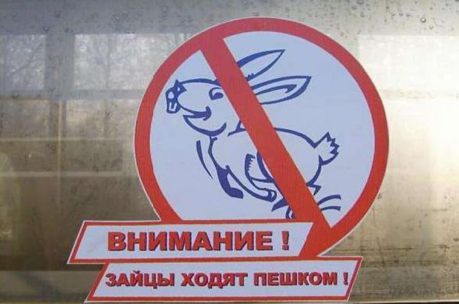 На электричках между Тверью и Москвой «зайцев» ловят с полицией