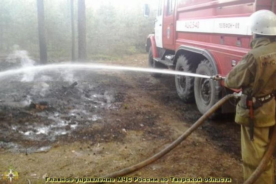В Тверской области пожарные тушат возгорания сухой травы
