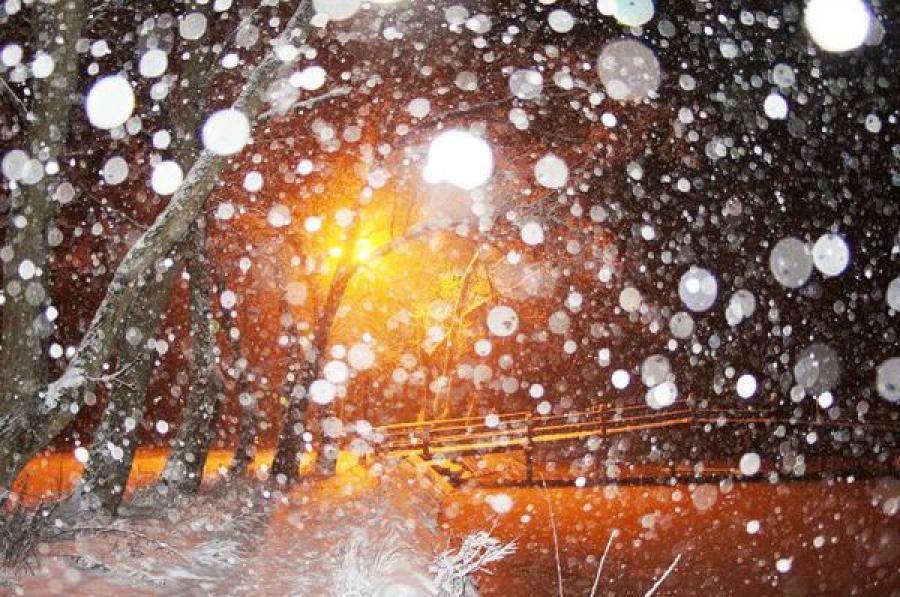 Тверская область ждёт снегопада: объявлено штормовое предупреждение