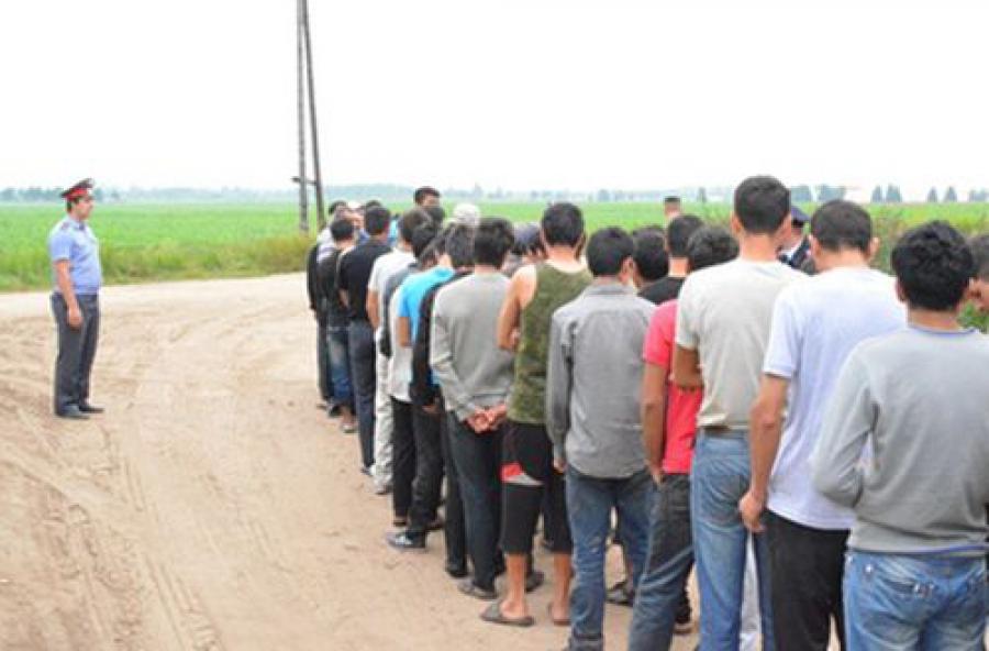 На заводе «Искож» нашли нелегальных мигрантов