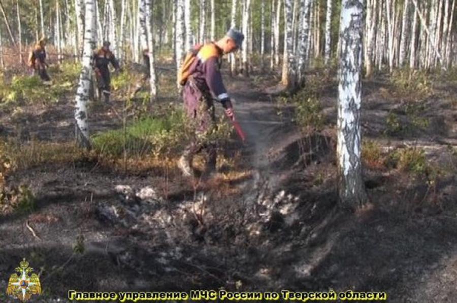Обстановка с пожарами в Тверской области улучшилась
