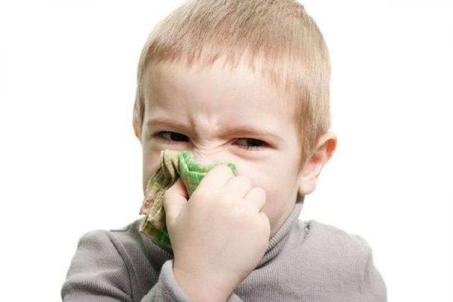 Жители Верхневолжья гриппом пока не болеют