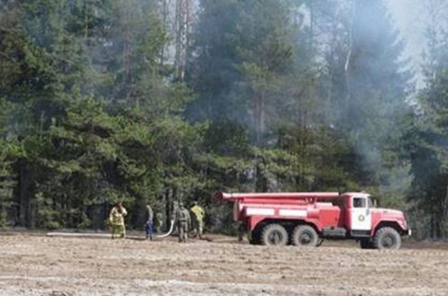 Два лесных пожара зарегистрировано в Тверской области за полдня