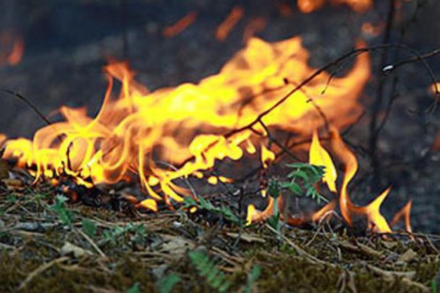 В сельских поселениях Торжокского района не соблюдались требования пожарной безопасности