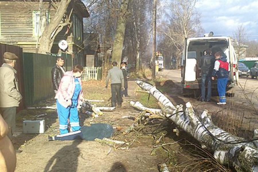 Из-за шторма в Тверской области в 6 районах отключалось электричество, погиб один человек
