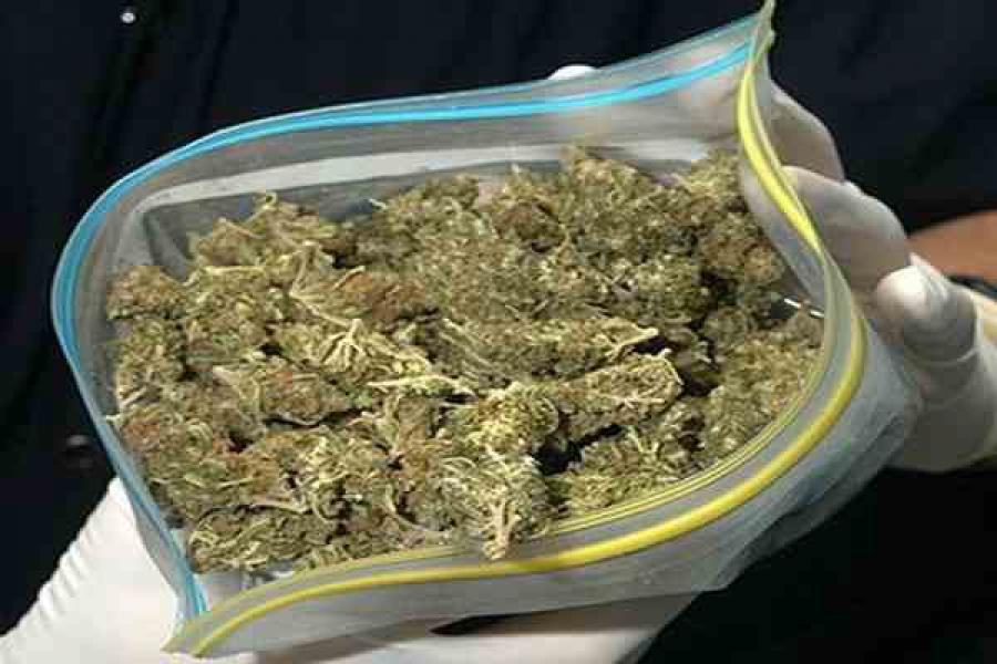 Более 26 кг марихуаны изъяли тверские наркополицейские