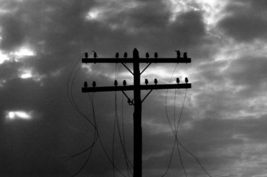 Из-за сильного ветра без электричества остались жители четырех районов Тверской области