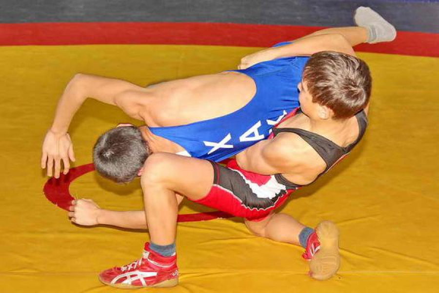 Турнир по греко-римской борьбе проходит в Твери