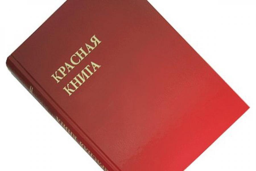 Принят закон о Красной книге Тверской области