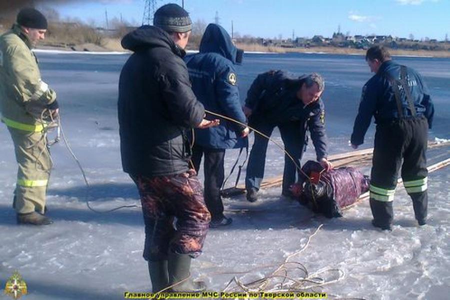 Тонущего рыбака выловили из воды на озере в Торопце