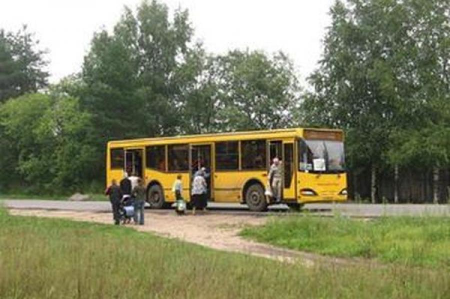 Автобус №121 будет ходить до СНТ «Синтетик»