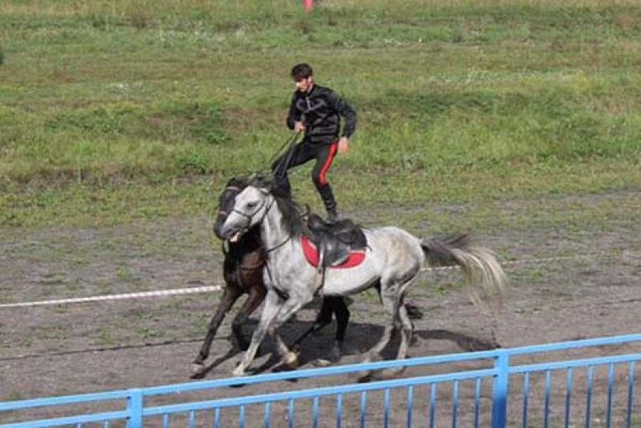 Осуждённые подростки побывали на экскурсии на Тверском ипподроме