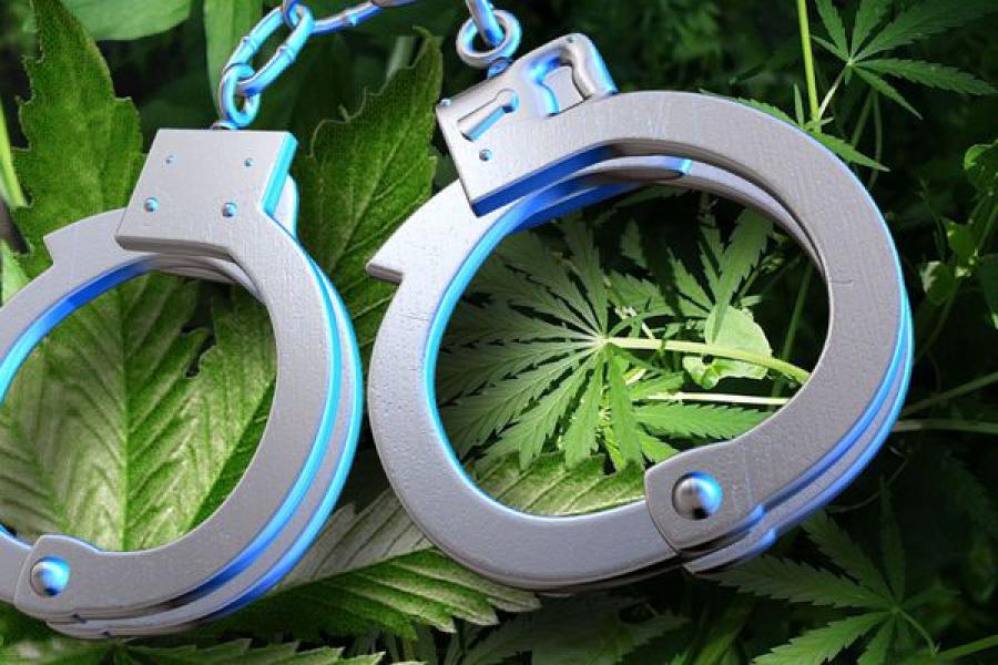 Мужчина и подросток предстанут перед судом за незаконные производство и сбыт наркотика