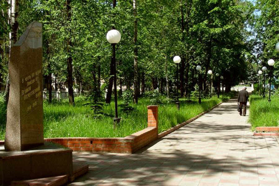 По инициативе жителей отремонтированы клуб, водопровод, дорога и парк
