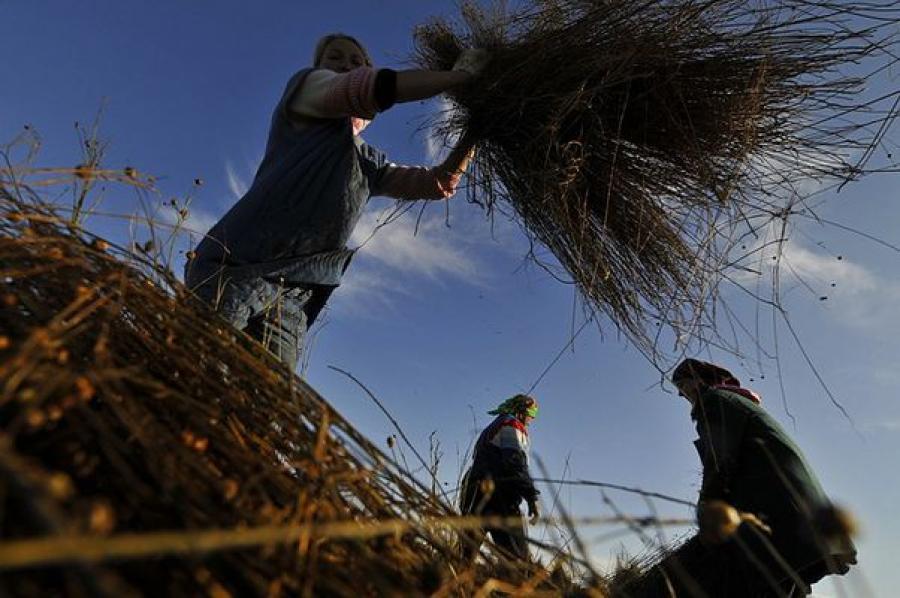 В Тверской области увеличена поддержка аграриев