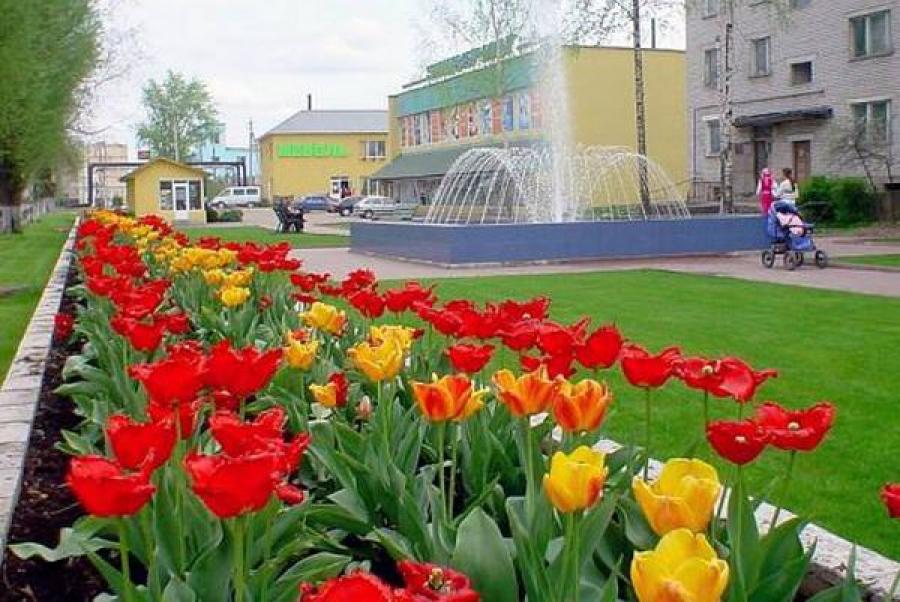 Западная Двина — самый благоустроенный город Тверского региона