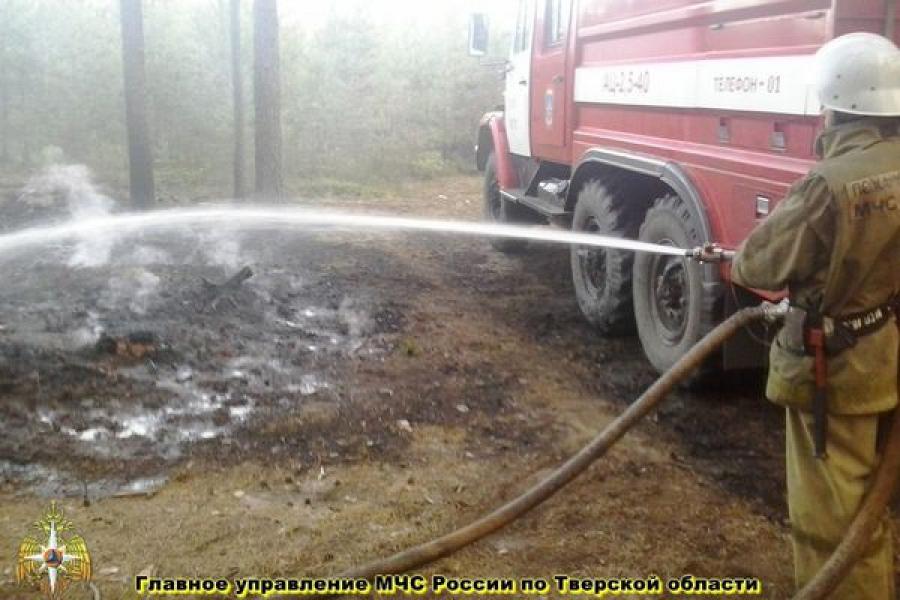 В Калининском районе горел лес рядом с двумя населенными пунктами