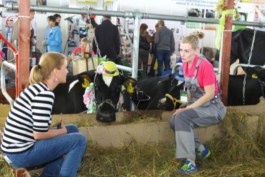 Верхневолжские аграрии участвуют в выставке «Золотая осень»