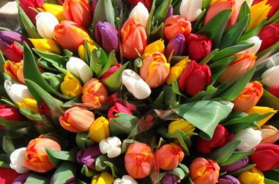«Дарите женщинам цветы!»