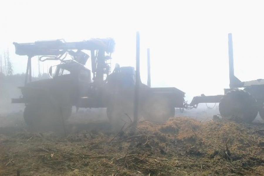 В районе деревни Дмитровское Калининского района тушат лесной пожар