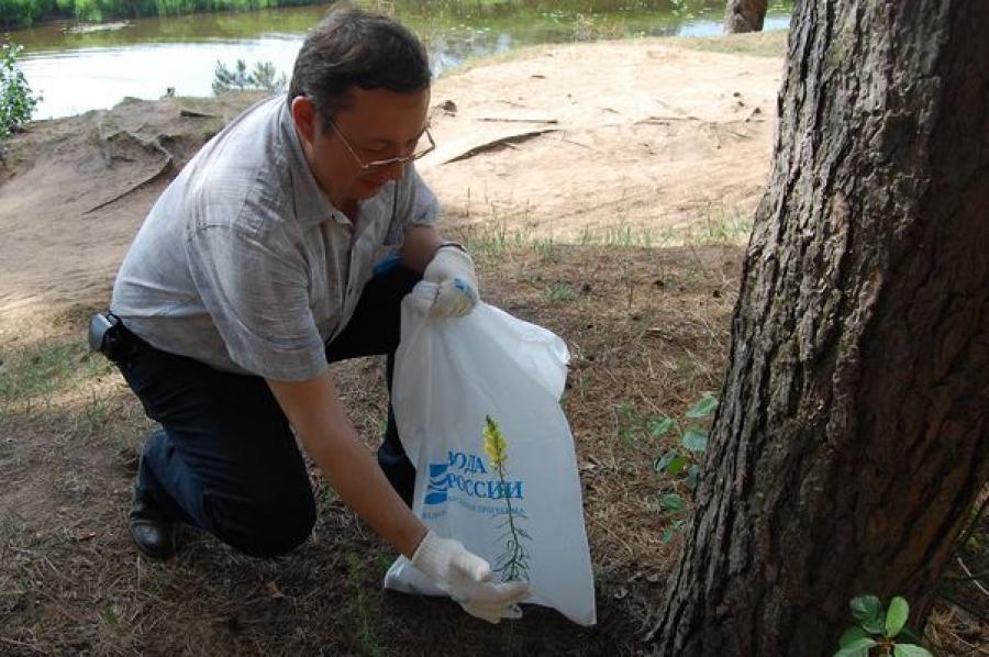 На берегу Тьмаки в Первомайской роще теперь чисто