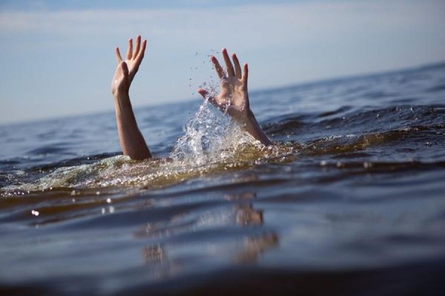 В Кувшинове в пруду утонули два маленьких мальчика