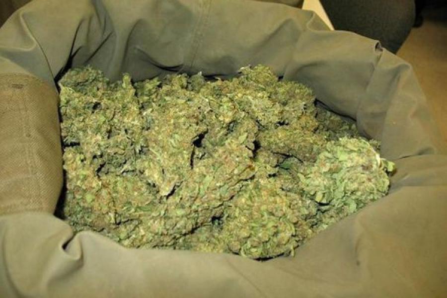 Мужчина пойдет пойдет суд за хранение марихуаны