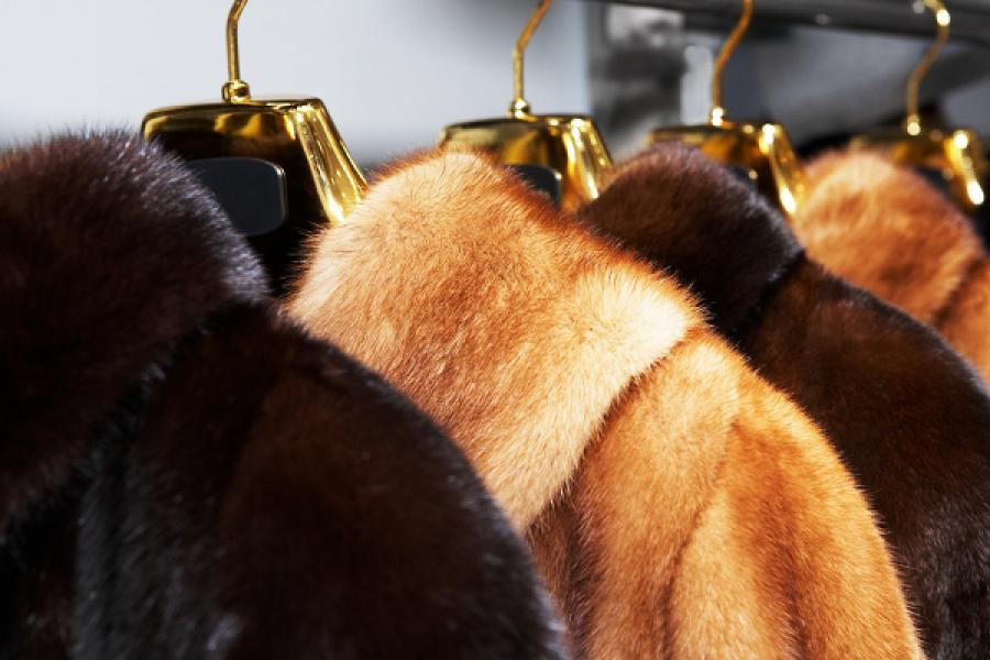 Женщина «приоделась», украв меховую куртку за 42 тысячи рублей