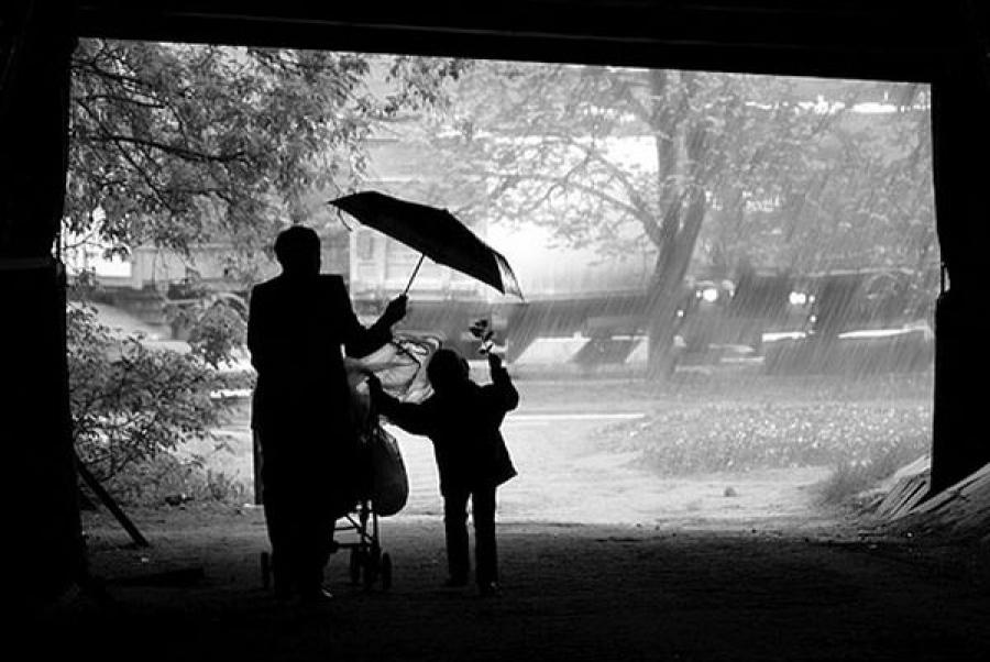 Жителей Тверской области предупредили о дождях, грозах и сильном ветре