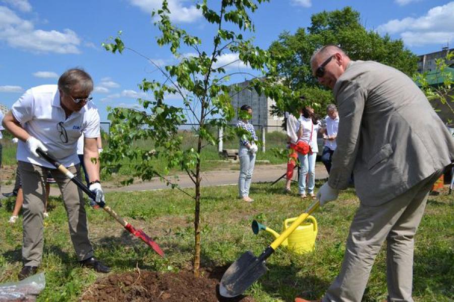 У тверского роддома №1 по иницативе компании SKF посадили деревья и кустарники