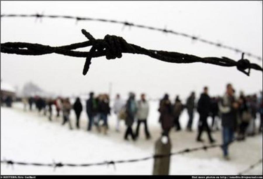 Номер на руке помог доказать, что 82-летняя женщина была узником Освенцима