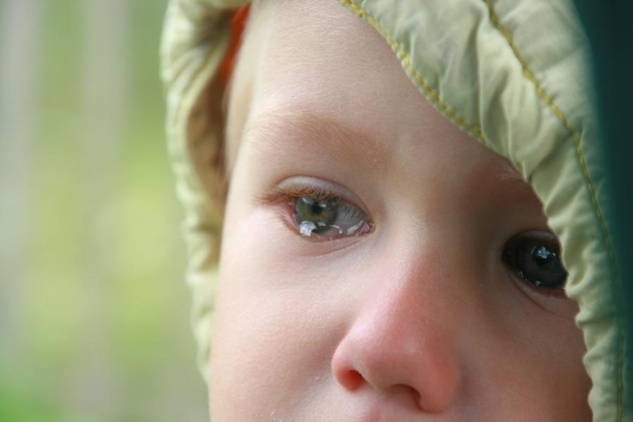 Следователи проверят информацию о ЧП в конаковском детском саду