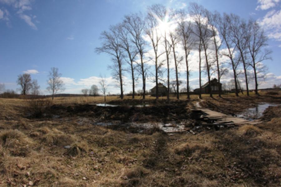 Предприятие в деревне Саначино Старицкого района проверят инспекторы по охране природы