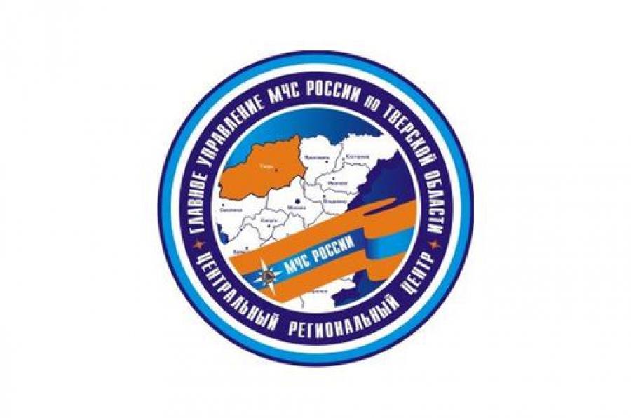 В Тверской области ожидается гроза с усилением ветра