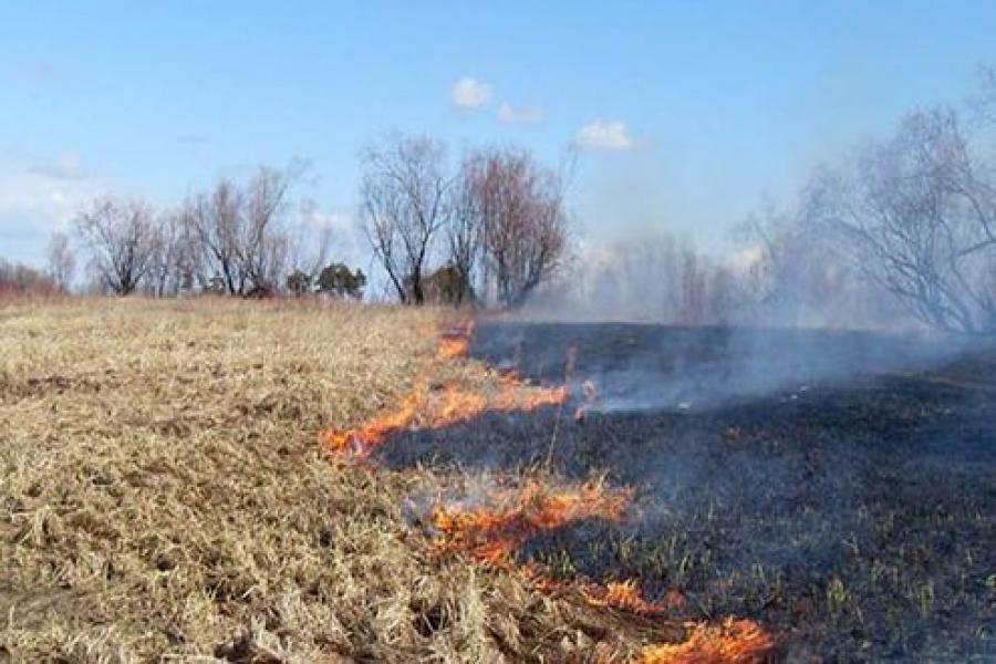 В ГУ МЧС обсудили возможность возникновения пожаров из-за пала сухой травы