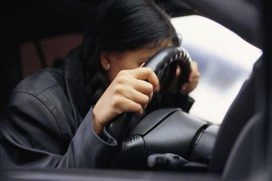 В Андреапольском районе две дамы угнали автомобиль