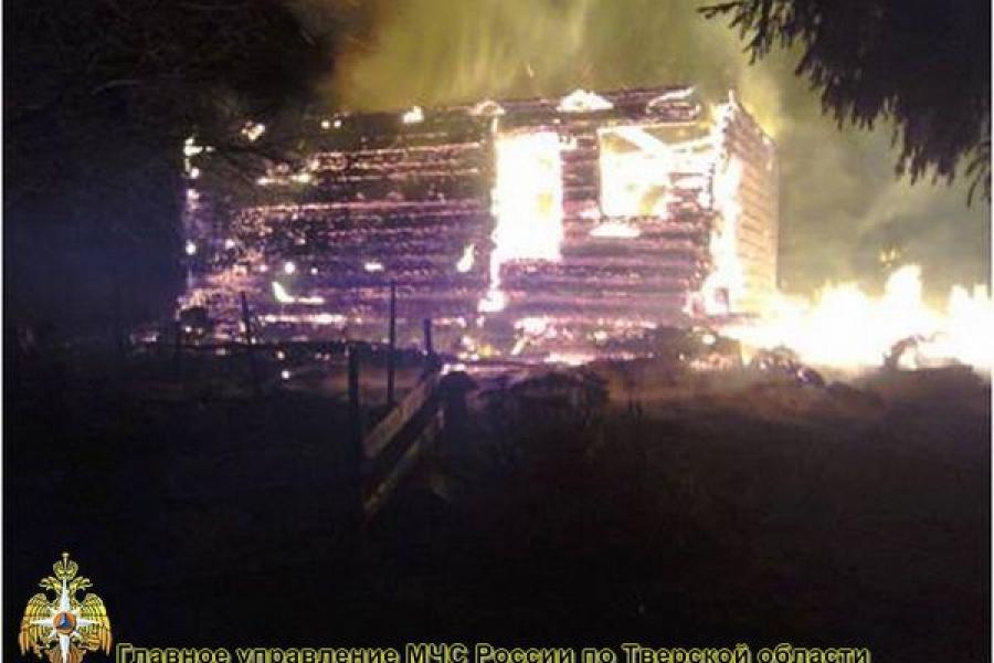 В Оленинском районе сгорел жилой дом
