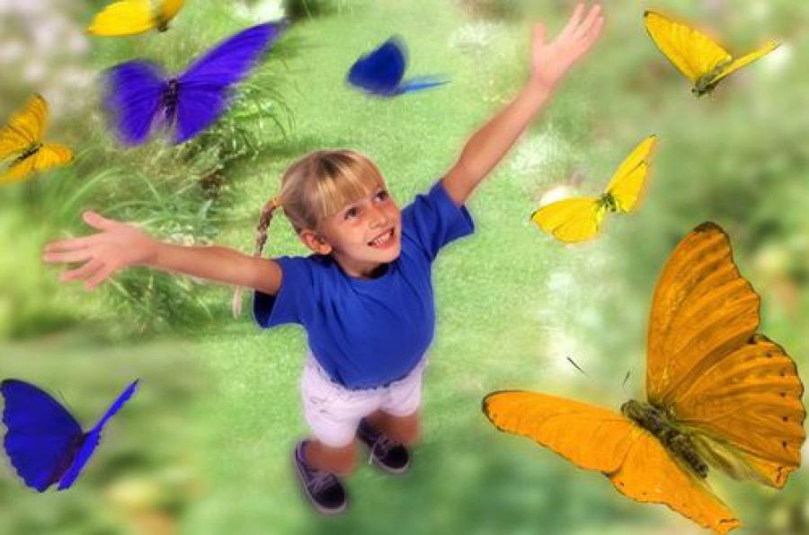 Летние лагеря Тверской области примут более 62,5 тысячи детей